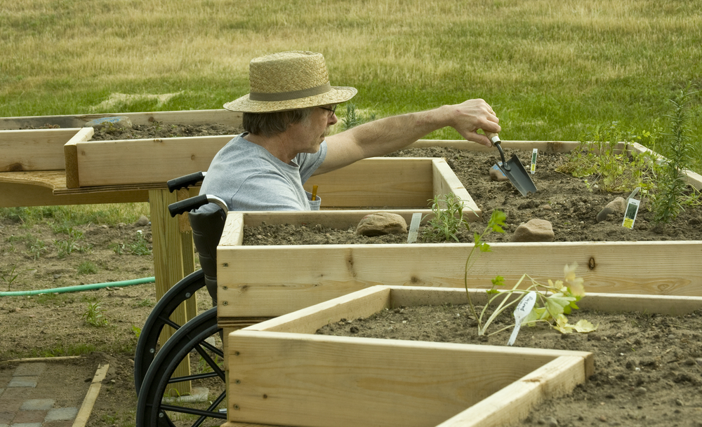 Disabled person working in garden